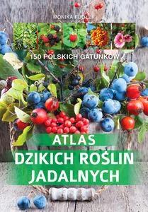 Atlas dzikich roślin jadalnych - Monika Fijołek