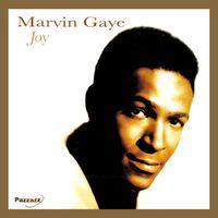 Joy - GAYE, MARVIN
