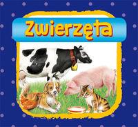 Zwierzęta - Stocka Katarzyna, Myślak Monika