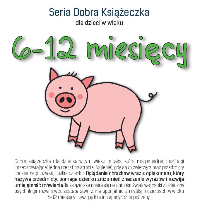 Seria Dobra Książeczka dla dzieci w wieku 6-12 miesięcy - Agnieszka Starok